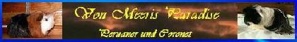 Banner von Meeris Paradise3